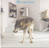 Album cover: Grinderman 2 by Grinderman
