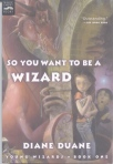 So You Want To Be A Wizard cover