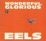 Wonderful, Glorious cover